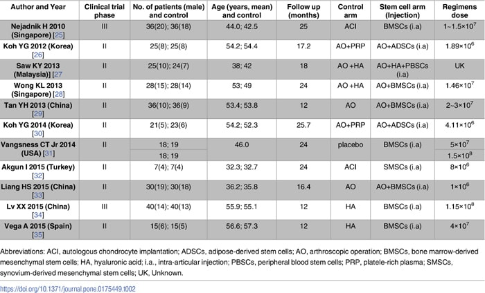 幹細胞治療で変形性膝関節症の改善が確認された6つの評価スコア