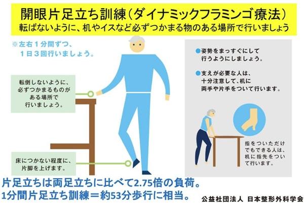膝痛を改善するダイナミックフラミンゴ療法
